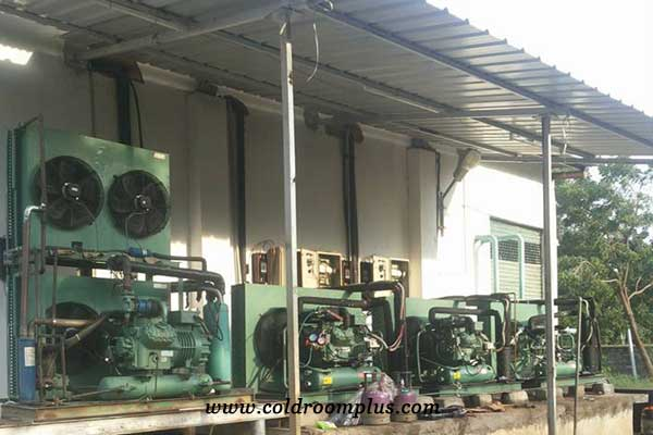 parallel bitzer condensing unit case