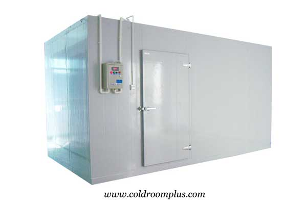 cold room hinged door for freezer room