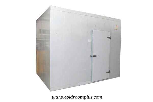freezer room for meat