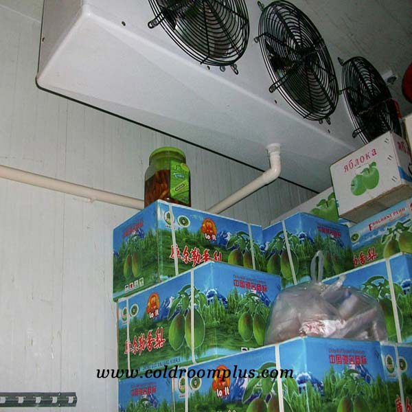 High performance Chiller Room for Fruit Storage