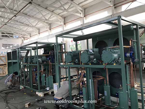 professional cold room supplier factory