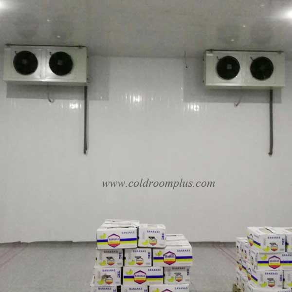 meat freezer room panels in Pakistan