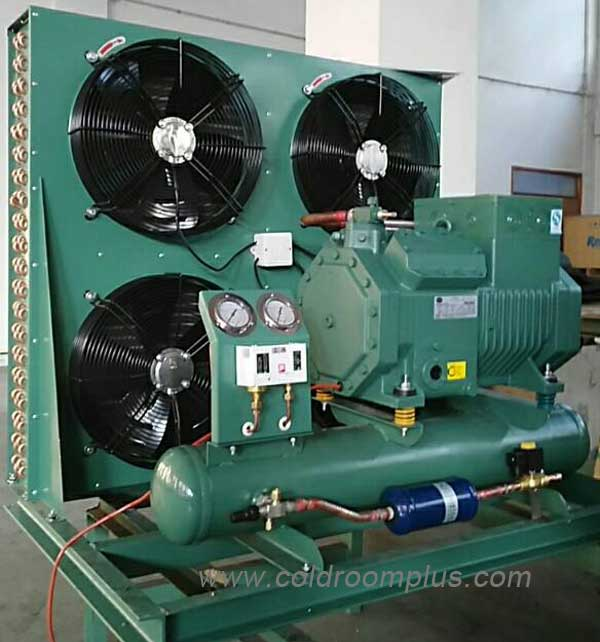 Bitzer condensing unit for commercial freezer room