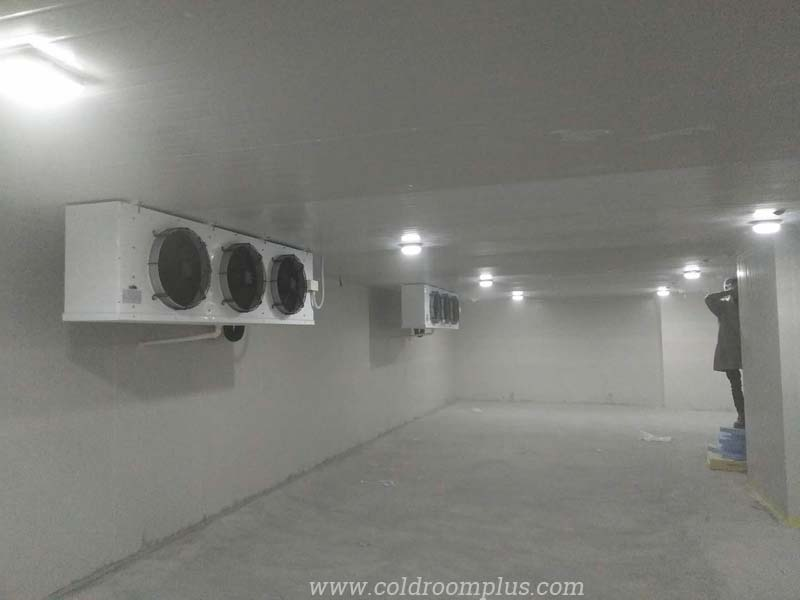 Air cooler for fruit cold storage room