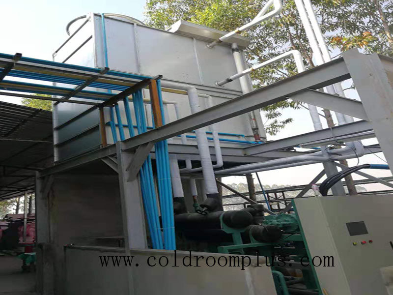 Vegetable Cold Rooms in Singapore