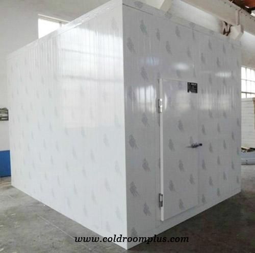 Beef Room Freezer in Ghana